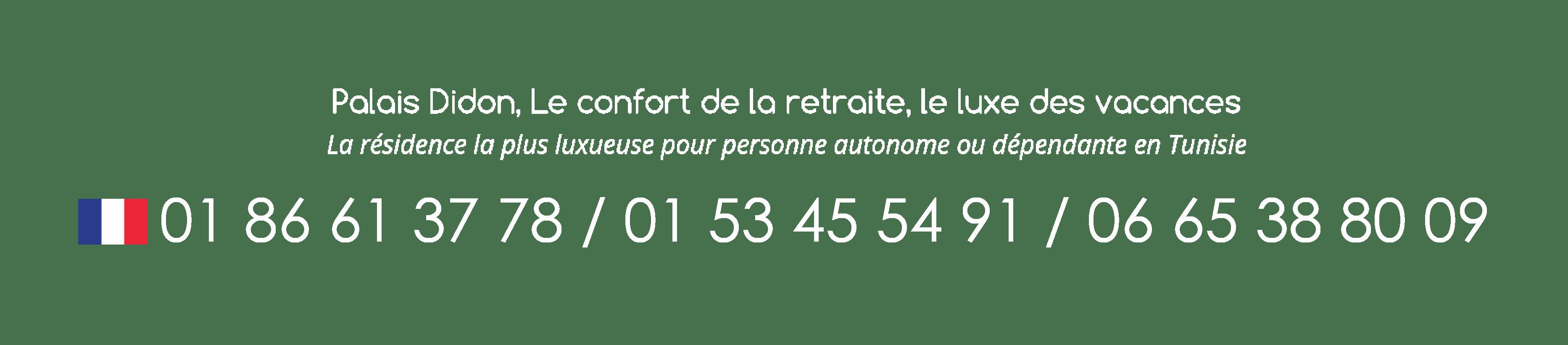 Tel FR DIDON 01 - Le Palais Didon